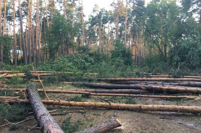Збори громади Водогону проти незаконного будівництва у селищі